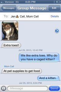 Why does she torture me with extra-toed kittens that she's not going to adopt?