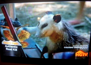 """I like that HGTV felt the need to label it """"authentic roadkill."""" Not faux, authentic."""