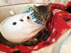 Sookie is trapped by the snowman costume simply touching her body.