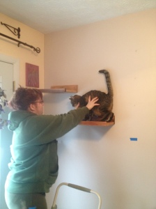 We tested each shelf after installation. The cats were just about done with me.