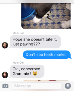 Thanks, Grammie.