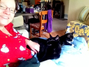Trapped under 20 pounds of cat.