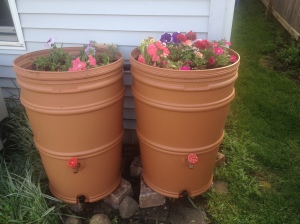 Rain barrel love.